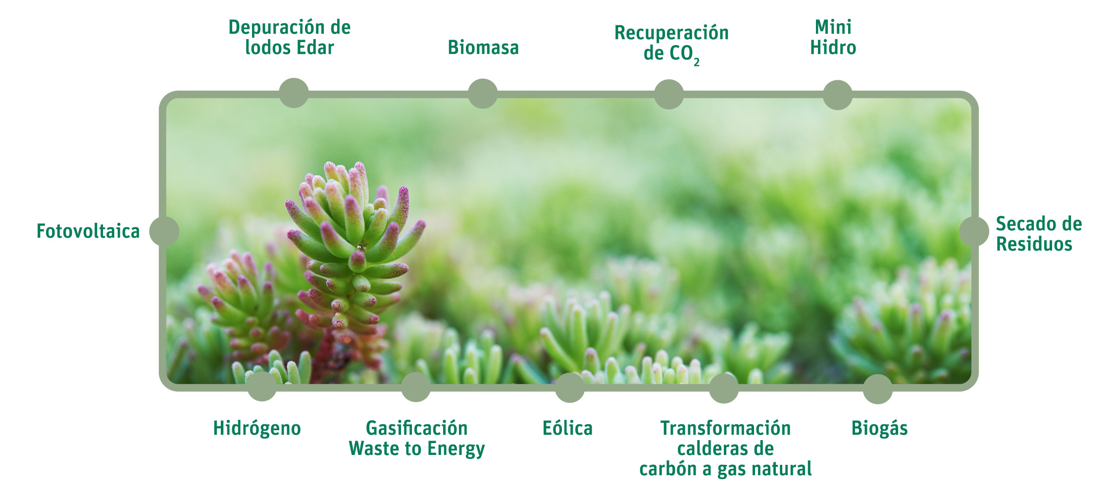 neoelectra-GREEN-enegia-renovable